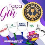 Taça gin acrilico personalizada bh